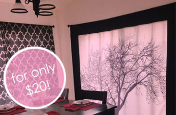 DIY Picture Curtain